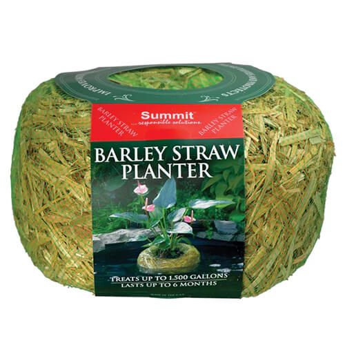 Barley Straw Planters Medium