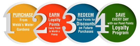 loyalty pond points