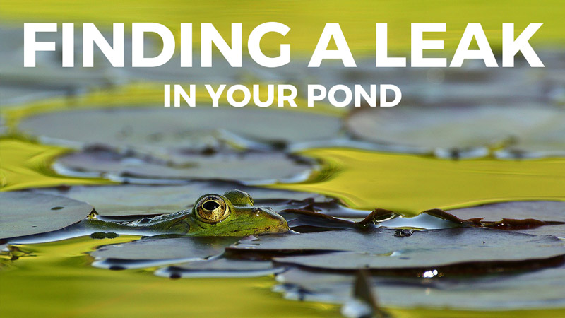 HOW TO LOCATE A POND LEAK