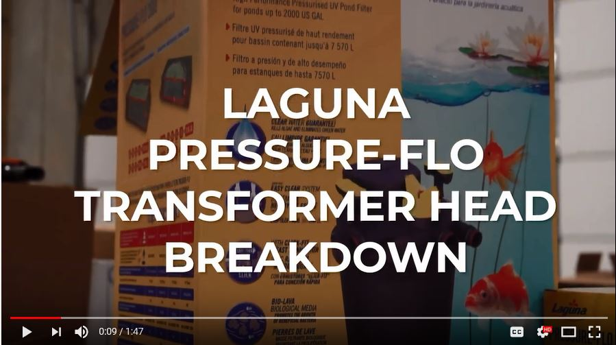Laguna Pressure Flo Transformer Head Breakdown