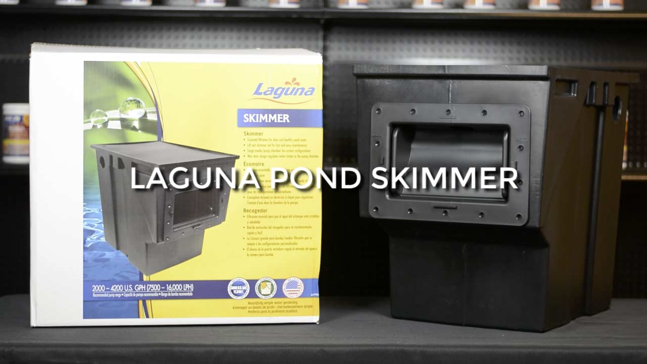 Review: Laguna Pond Skimmer