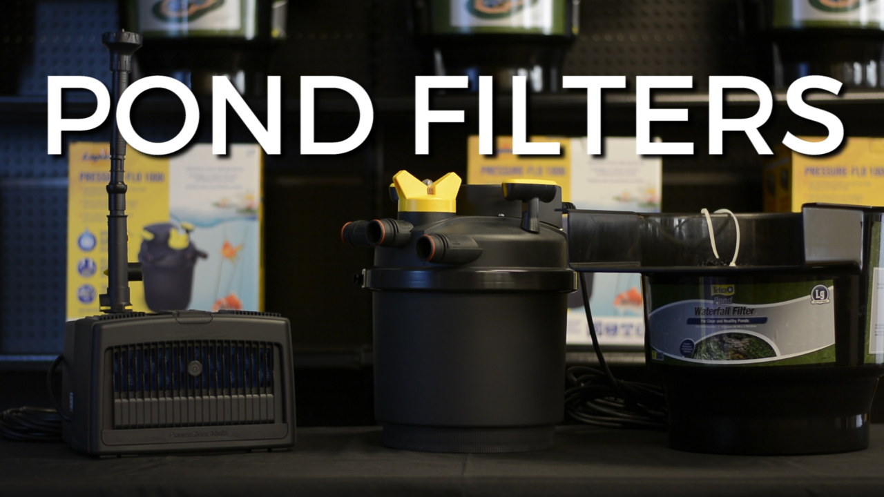 POND FILTERS |  3 Main Types
