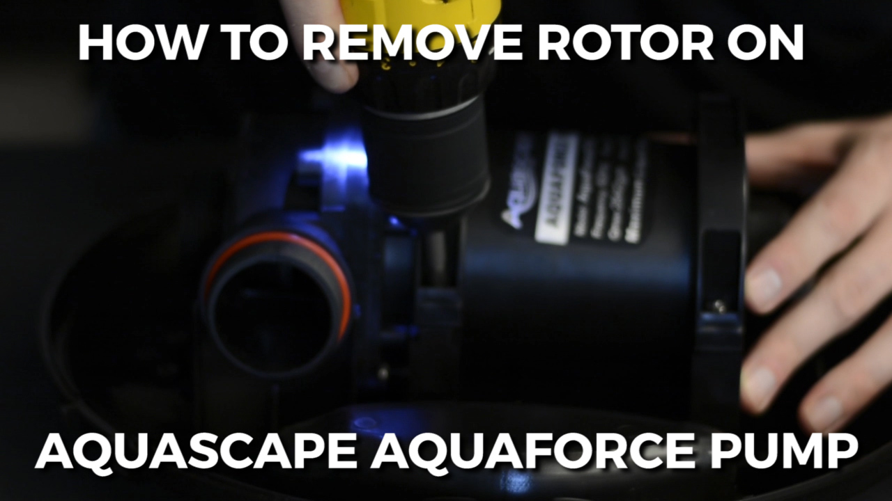 How To REMOVE ROTOR ON AQUASCAPE AQUAFORCE PUMP