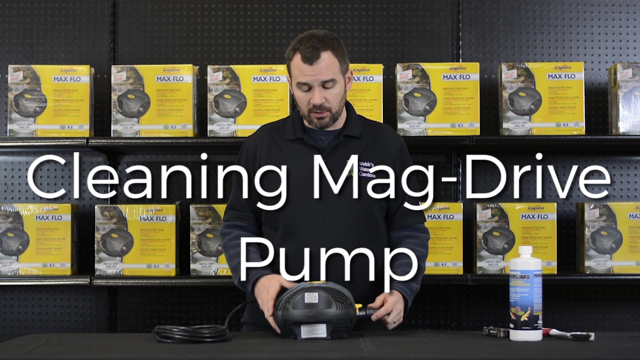 HOW TO CLEAN A MAG DRIVE PUMP