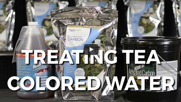 How To: How to Treat Tea Colored Pond Water
