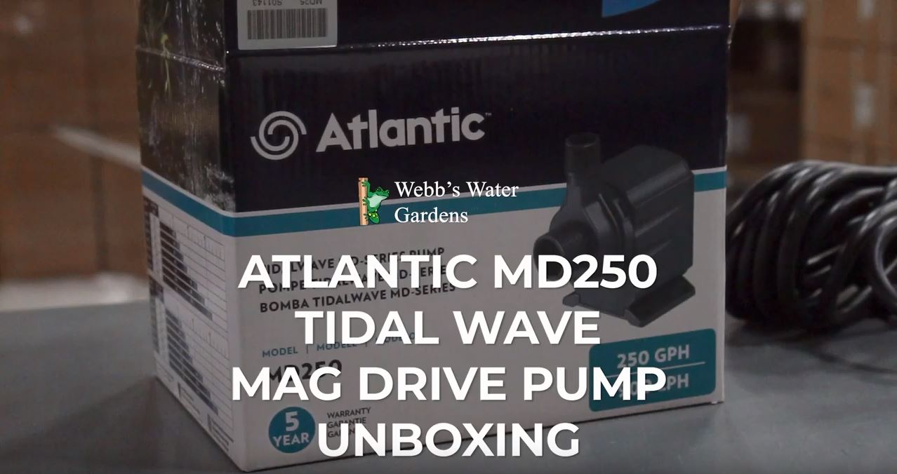 Atlantic MD250 Tidal Wave Mag Drive Pump Unboxing