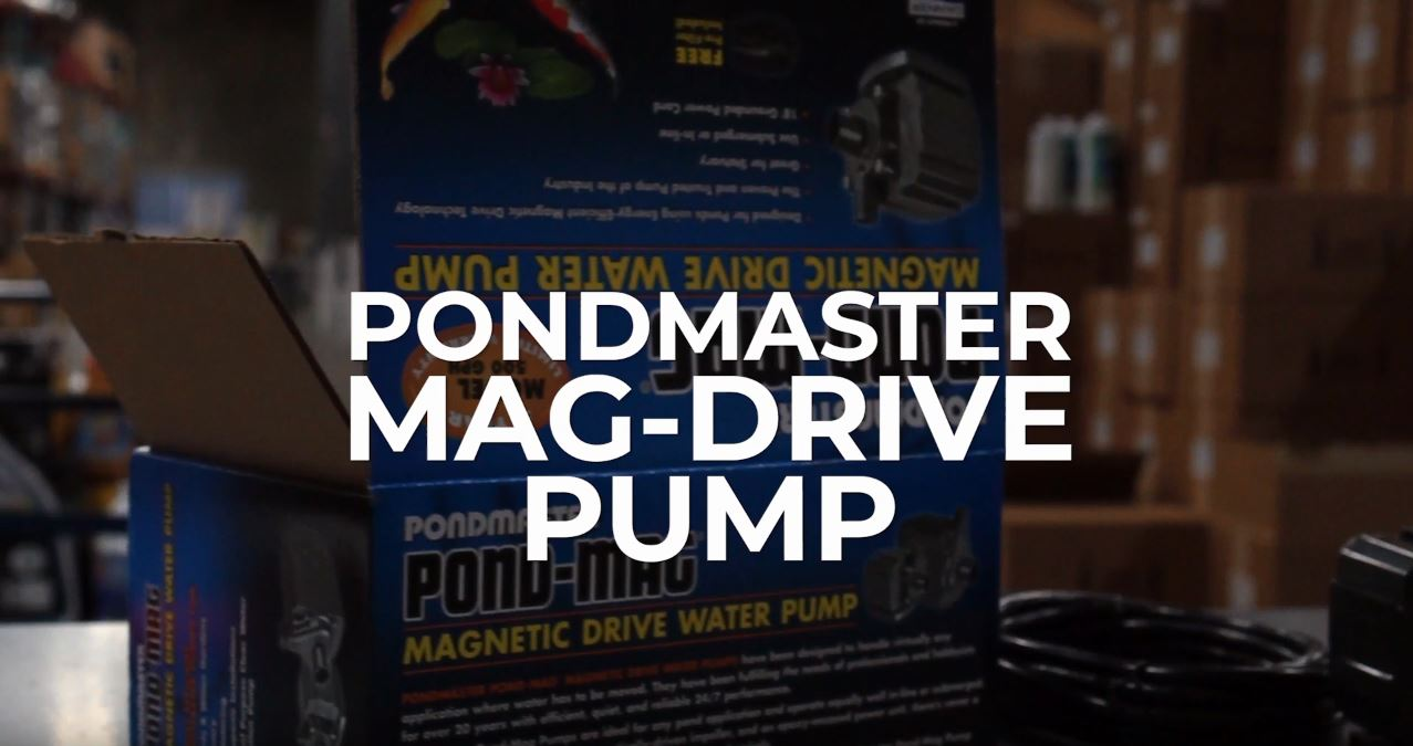Pondmaster Mag-Drive Pump - Diagnosing Repair