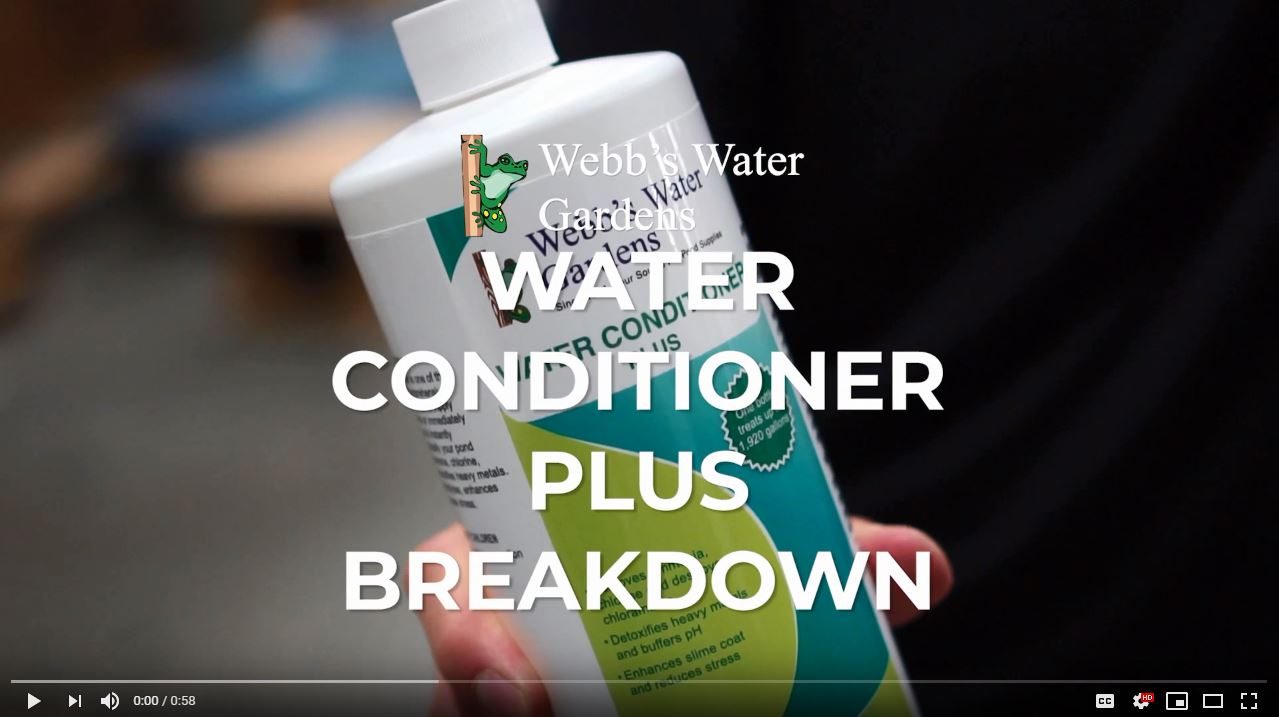Webbs Water Gardens Pond Water Conditioner Plus