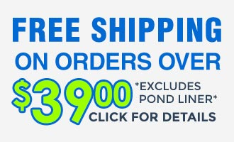 Free Shipping 39 June 2017
