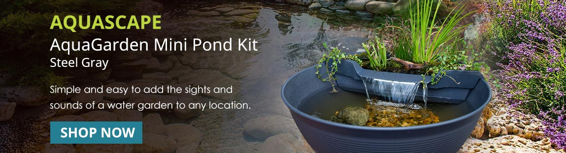 AquaGarden Mini Pond Kit