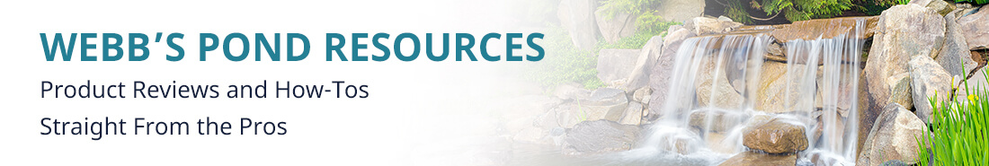 Webb's Pond Resources