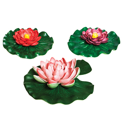 OASE Floating Lily Pad Variety Pack