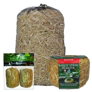 Barley Planters/Bales