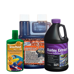 Liquid Extract