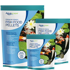 Aquascape Fish Food and Care