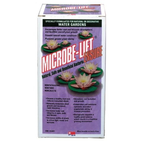 Microbe-Lift Ensure 1 Quart (MPN ENSUREQ)