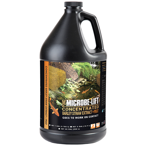 Microbe-Lift Barley Straw Extract & Peat 1 gallon (MPN BSEPG4)