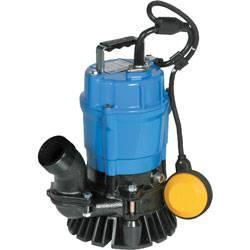 Tsurumi Pond Pump - HS Series Z2.4S (MPN HSZ2.4s)