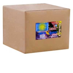 Hikari ClorAm-X Powder 55 lb. (MPN 72324)