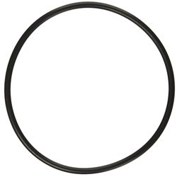Lid O-Ring for Sequence 6'' Strainer Basket 90 cu in, 3700PRM21, 4900PRM21, 6600PRM24 (MPN 1000.771-O)