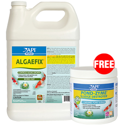 Pond Care AlgaeFix 1 gallon with Free Pond-Zyme Plus 8 oz. (MPN 169C)