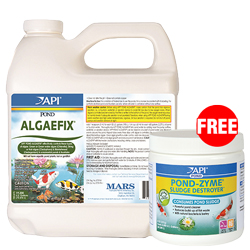 API PondCare AlgaeFix 64 oz. with Free Pond-Zyme Plus 8 oz. (MPN 169 D)