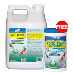 API Pond AlgaeFix 2 1/2 gallon with Free Pond-Zyme Plus 1 lb. (MPN 169 J)
