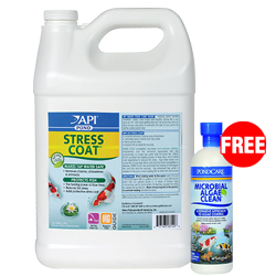 API Pond Stress Coat 1 gallon with Free Microbial Algae Clean 16 oz. (MPN 140 C)