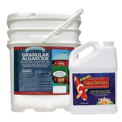 GreenClean Team, Algaecide 50 lb + Xtreme 1 gal.