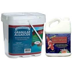 GreenClean Team, Algaecide 20 lb + Xtreme 1 gal.