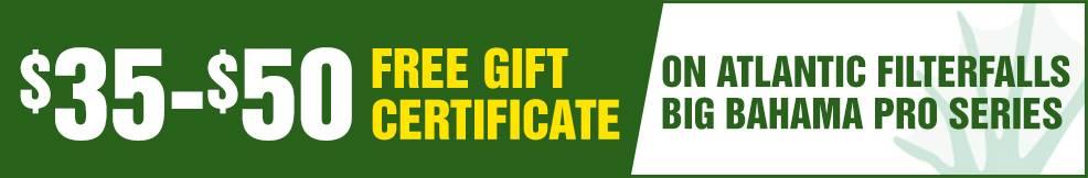 BBahama Pro filterfalls atlantic free Gift Certificate