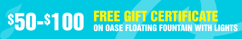 Floating Fountain with Lights 50-100 free gift certificate