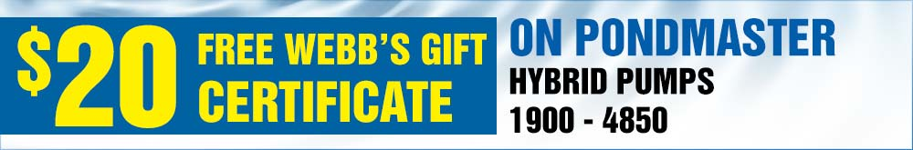 Hybrid Pumps 25 free Gift Certificate