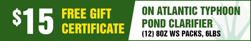atlantic Atlantic Typhoon Pond Clarifier 15 free Gift Certificate