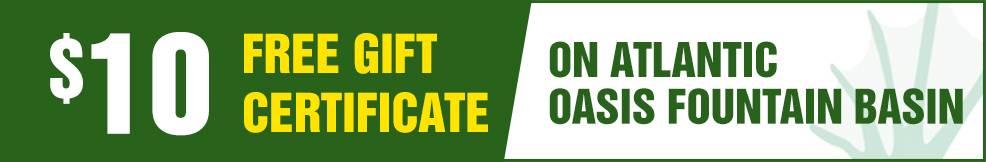 atlantic Oasis Fountain Basin free Gift Certificate