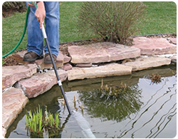 cleaning ponds